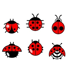 Ladybugs and beetles icons set vector image