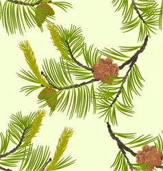 Seamless texture blooming pine tree and pine cones vector image vector image