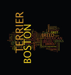 the boston terrier text background word cloud vector image vector image