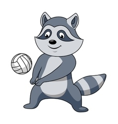 Cartoon raccoon with volleyball ball vector