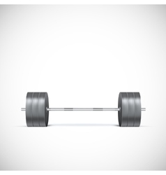 Metal barbell vector image