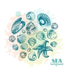 Shell hand drawn vector