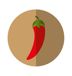 chilli pepper fresh vegetable isolated icon vector image vector image