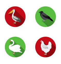 Pelican crow and other species birds set vector