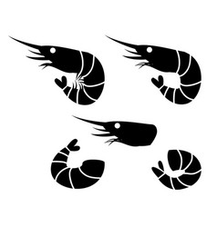 Shrimp and prawn icons object vector