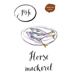 Three horse mackerels on a white plate vector
