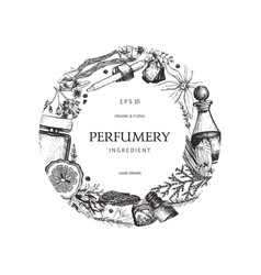 vintage perfumery and cosmetics set vector image