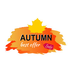 autumn best offer sale placard vector image