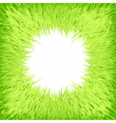 grass round frame vector image vector image