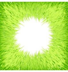 Grass round frame vector