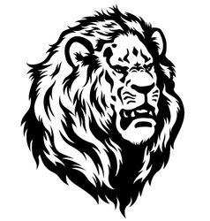 head of lion black white vector image vector image