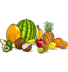 Tropical fruits cartoon vector