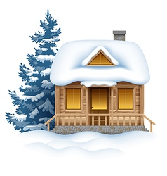 Winter House vector image