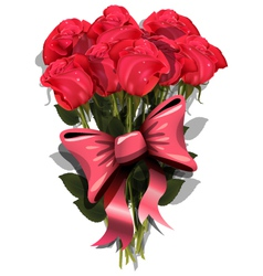 Bouquet of roses with a bow vector