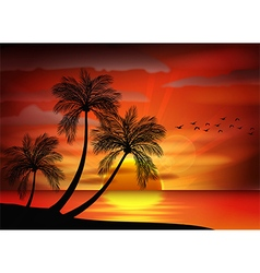Sunset background on beach vector image vector image