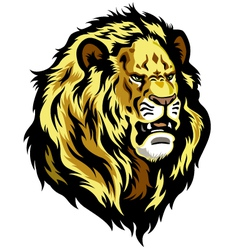 Head of lion vector