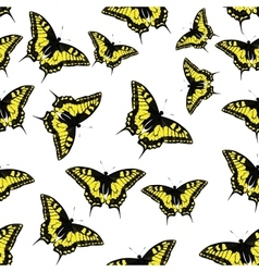Butterfly seamless pattern background vector