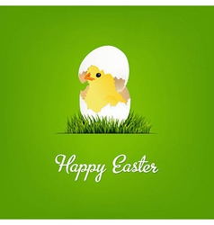 Happy easter card with chicken vector