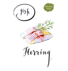 Two pieces of herring with dill vector