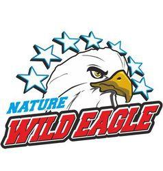 Wild eagle vector