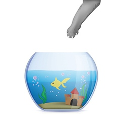 Fish bowl with cat paw vector image