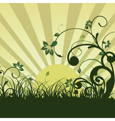 floral sunrise vector image vector image