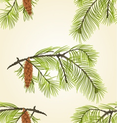Seamless texture White Pine branch with pine cone vector image vector image