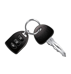 car keys isolated vector image vector image