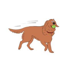 Labrador retriever dog breed vintage vector