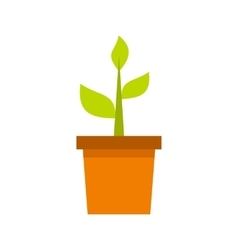 Plant in clay pot icon flat style vector
