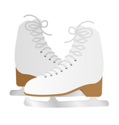 a pair of ice skates vector image