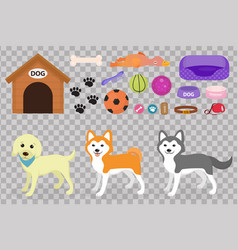 Dogs stuff icon set with accessories for pets vector