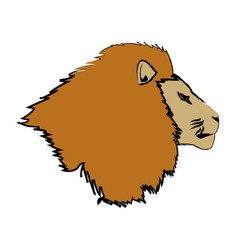 Head big lion african powerful fierce vector