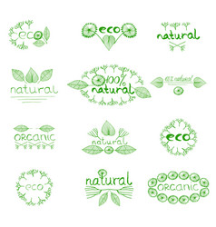 organic eco natural badge vector image vector image