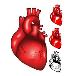 Heart2 vector