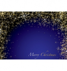 Christmas blue star vector image vector image