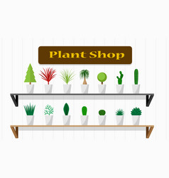 interiors plant shop with green plant on shelf vector image