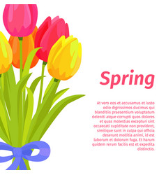 spring postcard with congratulations vector image