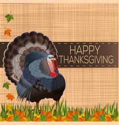 thanksgiving day design with turkey vector image