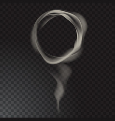 delicate cigarette smoke waves on transparent vector image