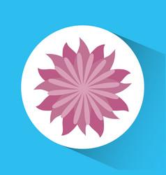 Flower emblem image vector