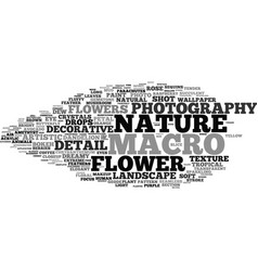 Macro word cloud concept vector