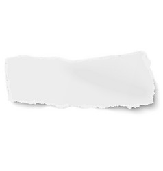 ragged torned paper scrap with soft shadow vector image vector image