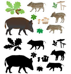 wild pig with cubs vector image vector image