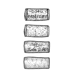 wine cork drawing engraving ink l vector image
