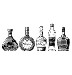 Types of brandy vector