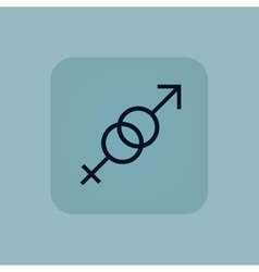 Pale blue gender signs icon vector