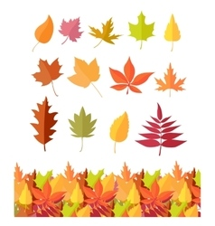 Set of Tree Leaf Icons Autumn Leaves Isolated vector image vector image