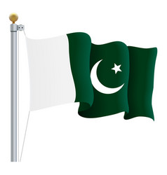 waving pakistan flag isolated on a white vector image