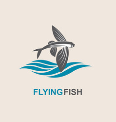 Flying fish icon vector